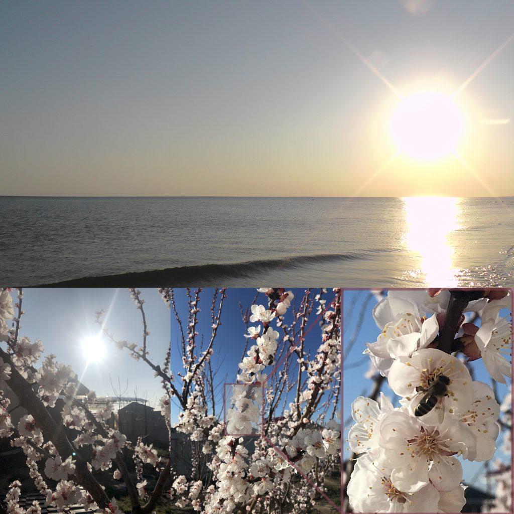 Март 2019, Черное море