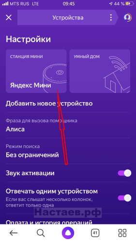 Яндекс.Станция мини в приложении Яндекс