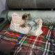 Соня любит спать на подушке